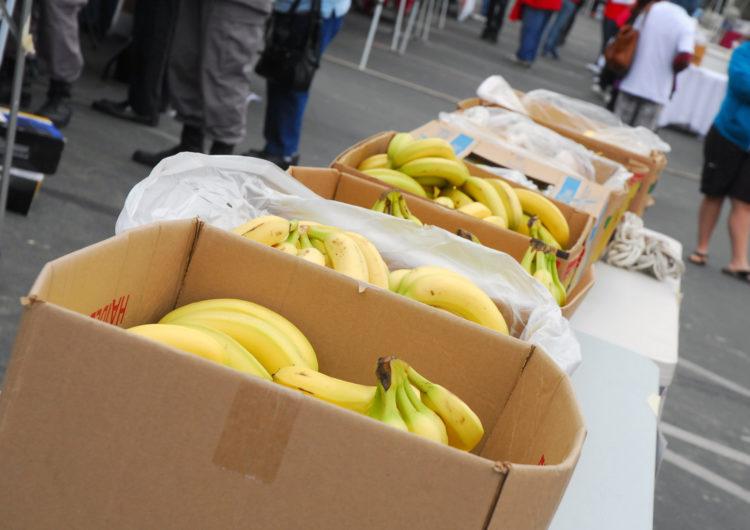 Food distribution this Thursday, Dec. 17